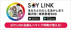SOY LINK