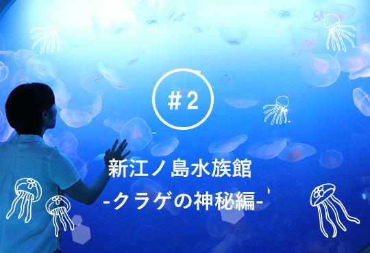 「クラゲって自宅で飼えるの?」 新江ノ島水族館で聞いてみた!  飼育の難しさや飼育員の涙ぐましい努力に脱帽