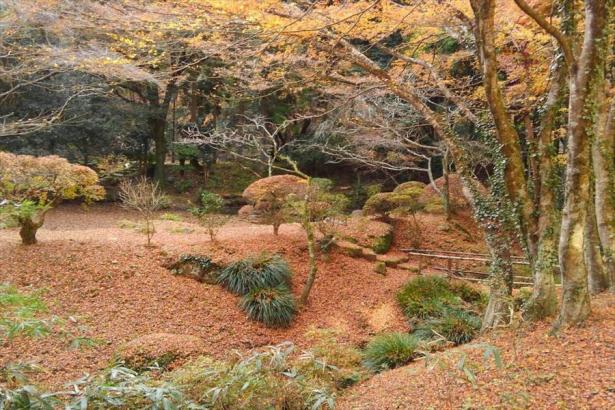 加満田庭園晩秋の風情