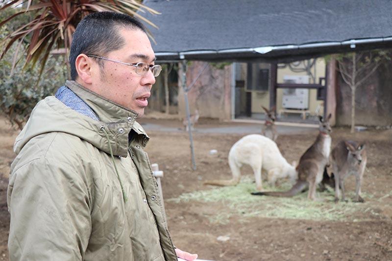 カンガルー担当飼育員の川嵜さん