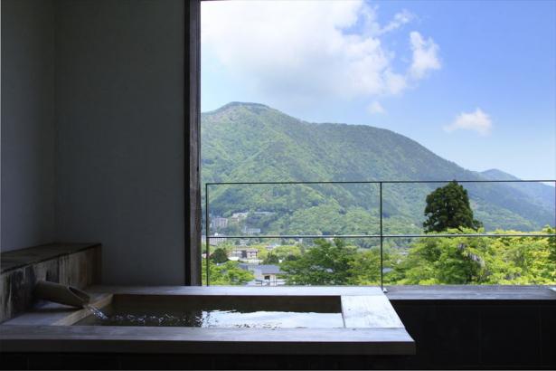 箱根の大パノラマを眺めながら
