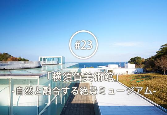 太陽光・海・空・木々と一体化した建築で、ゆったり自然とアートを楽しむ